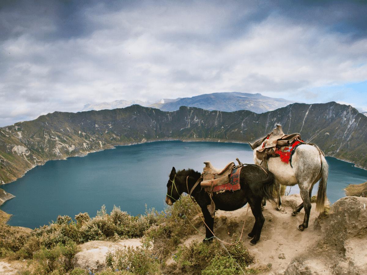 Interline Ecuador para Agentes de Viajes