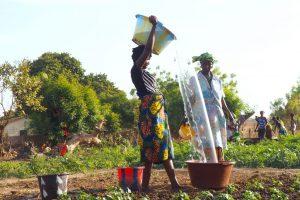 Gran Experiencia Solidaria en Senegal y Gambia